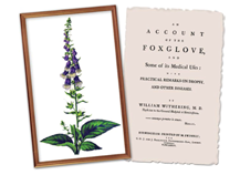 Withering and Foxglove