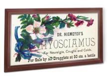 Niemeyer's Hyosciamus