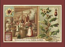 Liebig Henbane Ad Card