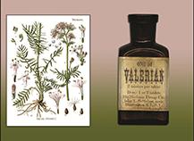 Valerian & Nitrous Oxide