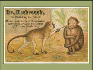 Monkeying Outside Central Park Zoo: Hasbrouck Advertises His Nitrous Oxide